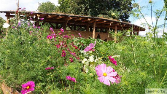 landworks_market_garden_cob_wall_flowers_